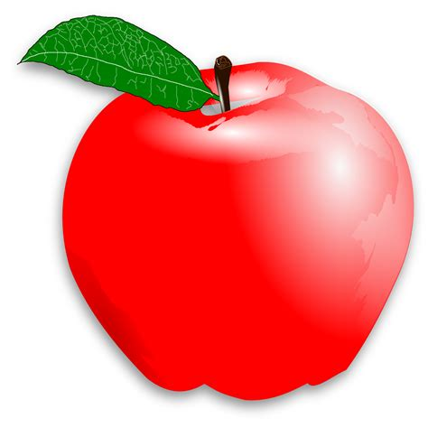 apple clipart png clipart apple