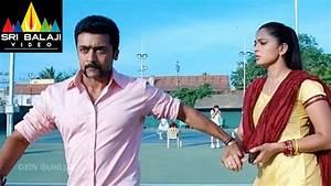 Singam (Yamudu 2) Telugu Full Movie Part 8/14 | Suriya ...