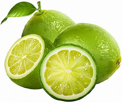 Lime Clipart Fruit Clip Clipground