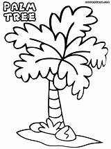 Palm Tree Coloring Pages Colorings Palmtree sketch template