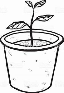 Pot Plant clipart black and white - Pencil and in color ...