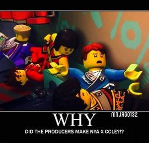 Ninjago Rebooted Cole And Nya | www.pixshark.com - Images ...