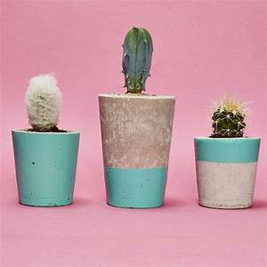 Pot A Cactus : concrete plant pot with cactus or succulent turquoise by hi cacti ~ Farleysfitness.com Idées de Décoration