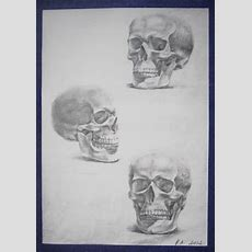 Angel's Journey Pencil Drawings Of Skulls