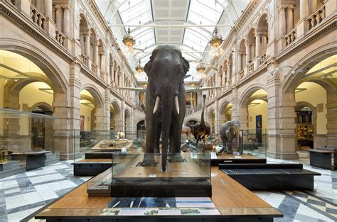 Glasgow's Best Art Galleries  Art Shows And Exhibitions