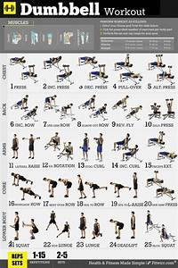 17 Best Images About Workout Posters  U0026 Exercise Charts On Pinterest