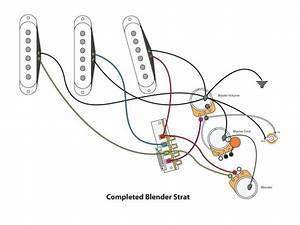 Fender Strat Wiring Diagram Guitar Pickup Diagram