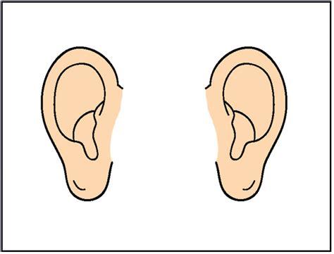 Ear Clip Best Ear Clipart 695 Clipartion