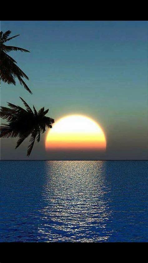 Pin by Patty Stevanus Lewandowski on Pictures   Beautiful ...