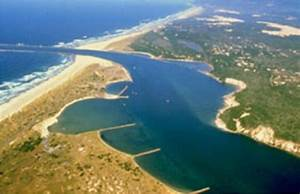 10 Interesting Estuary Facts   My Interesting Facts