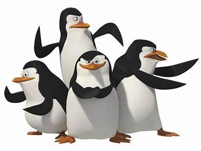 Madagascar Penguins Cartoon Characters