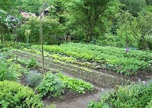Gemüsegarten Anlegen Beispiele : selbstversorgergarten anlegen beispiel projekt 10x10m zur eigenversorgung ~ Watch28wear.com Haus und Dekorationen