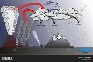Acid Rain Infographic Image  U0026 Photo  Free Trial