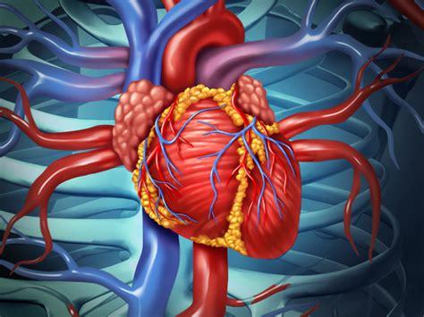 open heart surgery risks procedure preparation