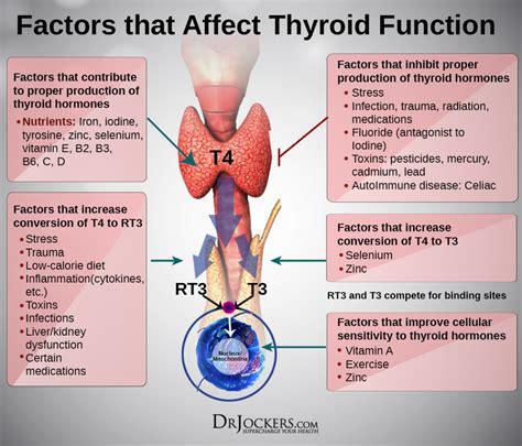 thyroid strong thyroid health hypothyroidism diet