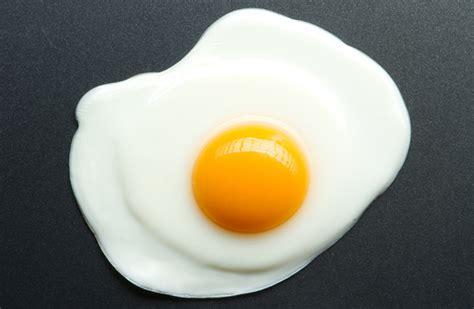 cuisine anti cholesterol le cholestérol du jaune d 39 œuf aurait les mêmes vertus que
