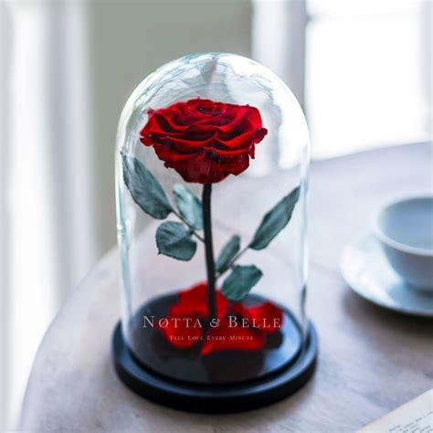 ewige im glas geschenkidee f 252 r frauen die ewige im glas memory