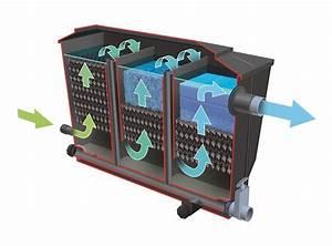 Filtration Biologique Pour Bassin A Poisson : filtre pour bassin bioclear grand bassin jardinet ~ Premium-room.com Idées de Décoration
