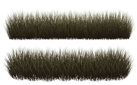 Grass_clumps_04_by_wolverine041269-d65c73b.png