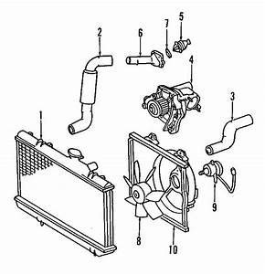 Toyota Celica Radiator Coolant Hose  2 2 Liter  Celica  Gt