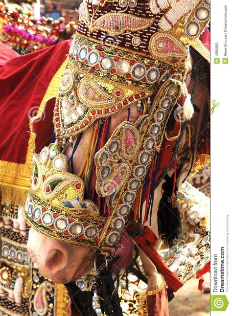 india jaipur decorated horse   wedding stock photo