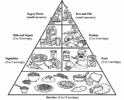 Pyramid Coloring Healthy Pages Diabetes Living Foods