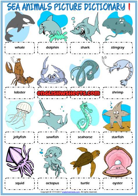 sea animals esl printable picture dictionary  kids