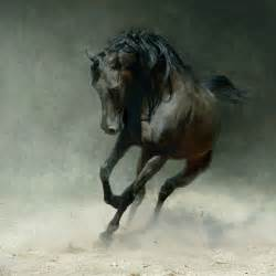 Arabian Horses | Laura2111's Weblog