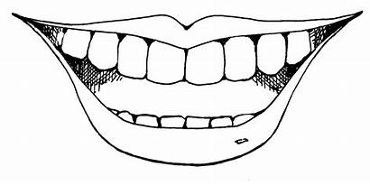 Smile Clip Clipart Smiling Face Clipartix Related