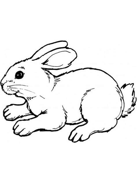 rabbits coloring pages   print rabbits