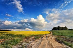 What Country Are Fields in Colza
