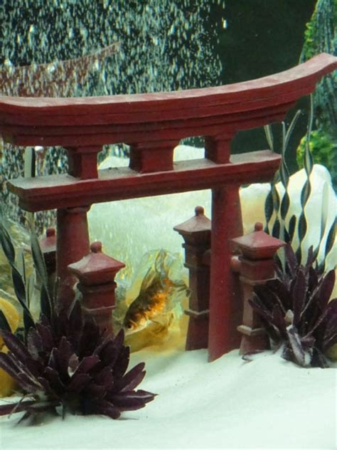 21 Best Fish Tank Decor Images On Pinterest Fish