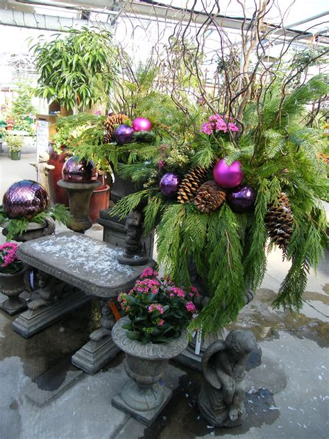 family tree nursery holiday winter pots