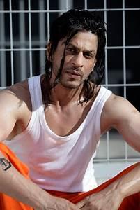 DON 2 has it locked up! | Bollywood News UK