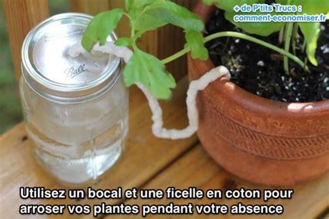 l astuce indispensable pour arroser vos plantes pendant votre absence