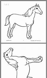Coloring Horse Pages Animal Fantasy Animals Horses Supplyme Downloads Amazonaws sketch template
