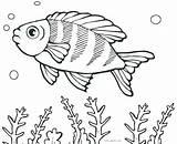 Fish Coloring Pages Fishing Saltwater Cartoon Printable Getcolorings Puffer Boy Template Flower Tropical Cool2bkids Colorin Colorings Getdrawings Fisherman Shape Ray sketch template