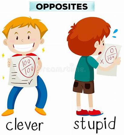 Stupid Clever Opposite Clipart Words Illustration Worst