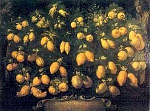 Il limone: frutto ricco di fibre, e fonte d ispirazione per artisti e poeti Dietaonline it