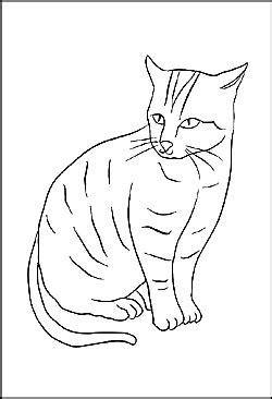 malbild katze cats katzen zeichnungen katzen und