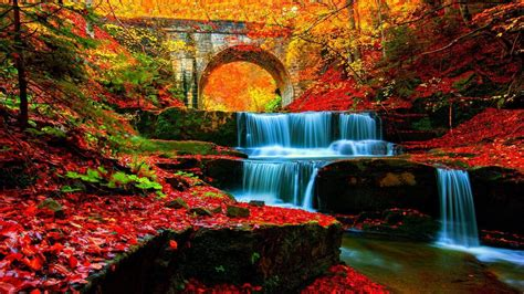 Autumn Waterfall In The Forest Hd Wallpaper Wallpaper