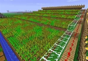 Minecraft Wheat Farm