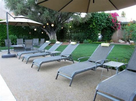 pool chairs picture of desert riviera hotel palm