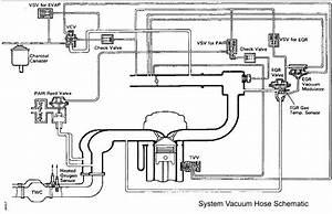 Vacuum Line Diagram
