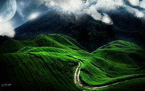 Beautiful green hills wallpaper