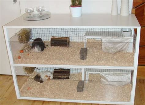 guinea pig cages homemade  hamsters  pinterest
