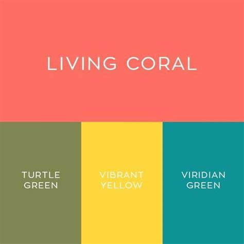 2019 Pantone Color Of The Year Living Coral Vibrant
