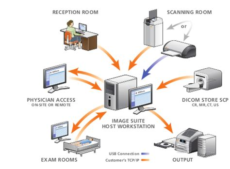 pacs digital radiography pacs radiology spectrum