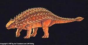 10 Facts About Ankylosaurus Fact File