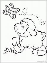 Sheep Cute Pages Butterfly Coloring Chasing Printable Funny sketch template